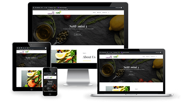 Nettl Mini 3 Website